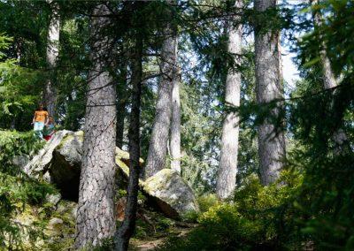 Mit Ingo in den Wald - Foto Gemeinde Unterkirnach